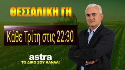 03 Athanasiadis Xristos Thessaliki gi
