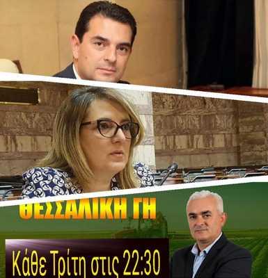 04 Thessaliki gi 1 12 2020.jpg